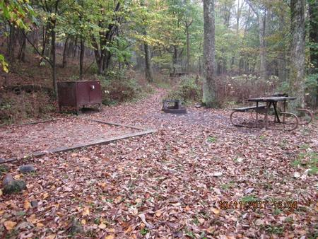 Loft Mountain Campground - Site 12