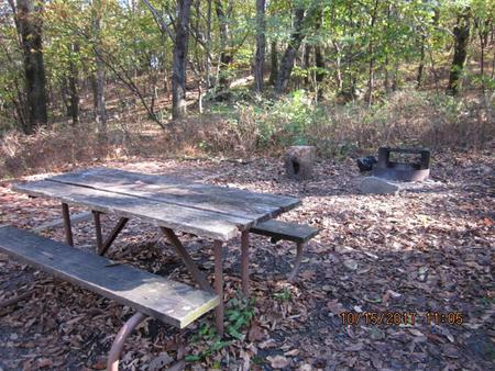 Loft Mountain Campground - Site 15