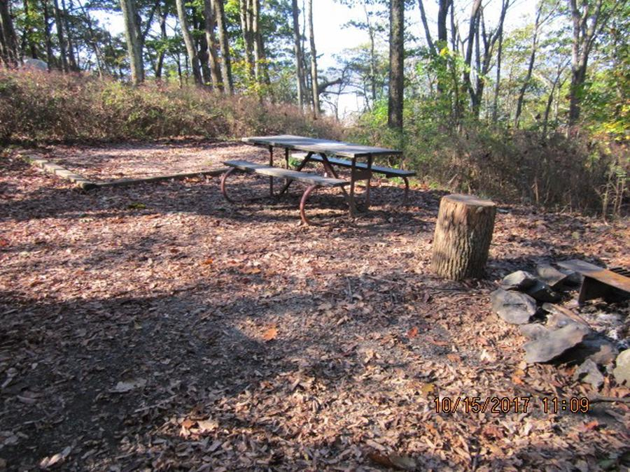 Loft Mountain Campground - Site 16