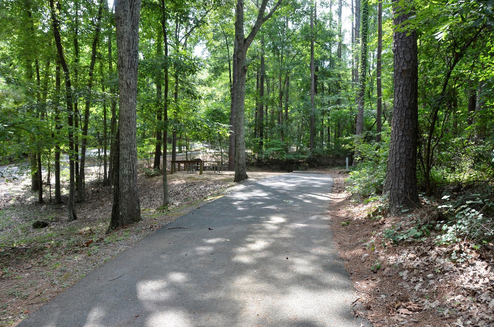 McKinney Campground Site 9