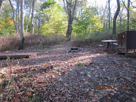 Loft Mountain Campground - Site 17Picnic table, food storage locker, and fire pit on campsite