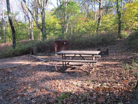 Loft Mountain Campground - Site 18Picnic table, food storage locker, and fire pit on campsite