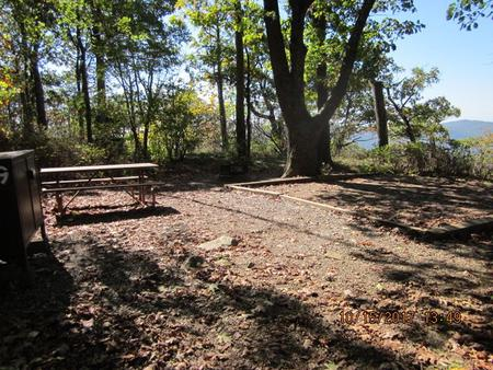 Loft Mountain Campground - Site 19Picnic table, food storage locker, and fire pit on campsite