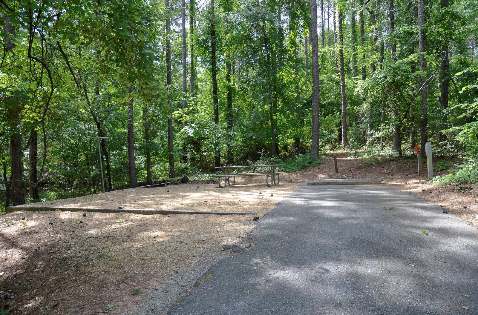McKinney Campground Site 11