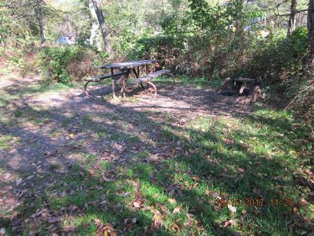 Loft Mountain Campground - Site 21