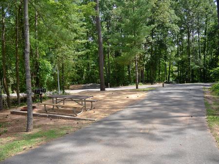 Campsite view..McKinney Campground, campsite #12