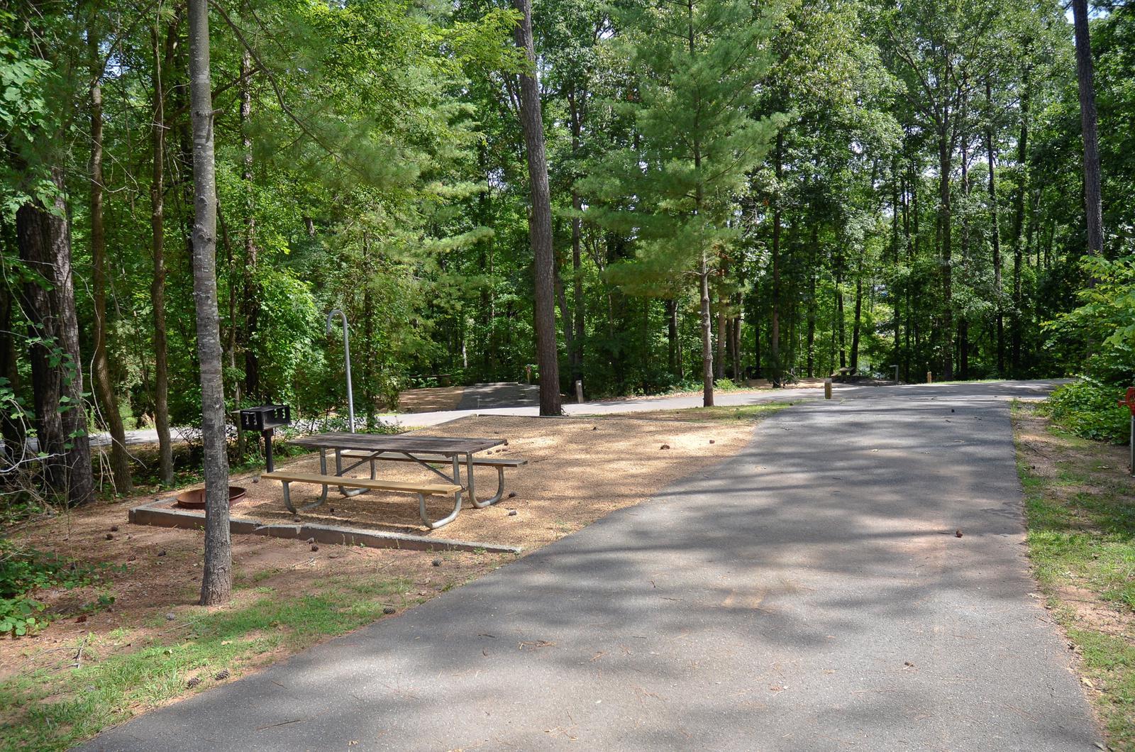 McKinney Campground Site 12