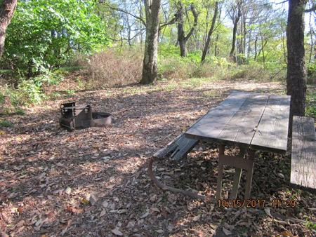 Loft Mountain Campground - Site 22Picnic table and fire pit on campsite