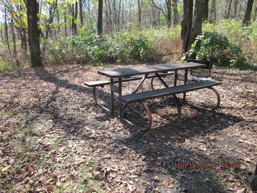 Loft Mountain Campground - Site 29