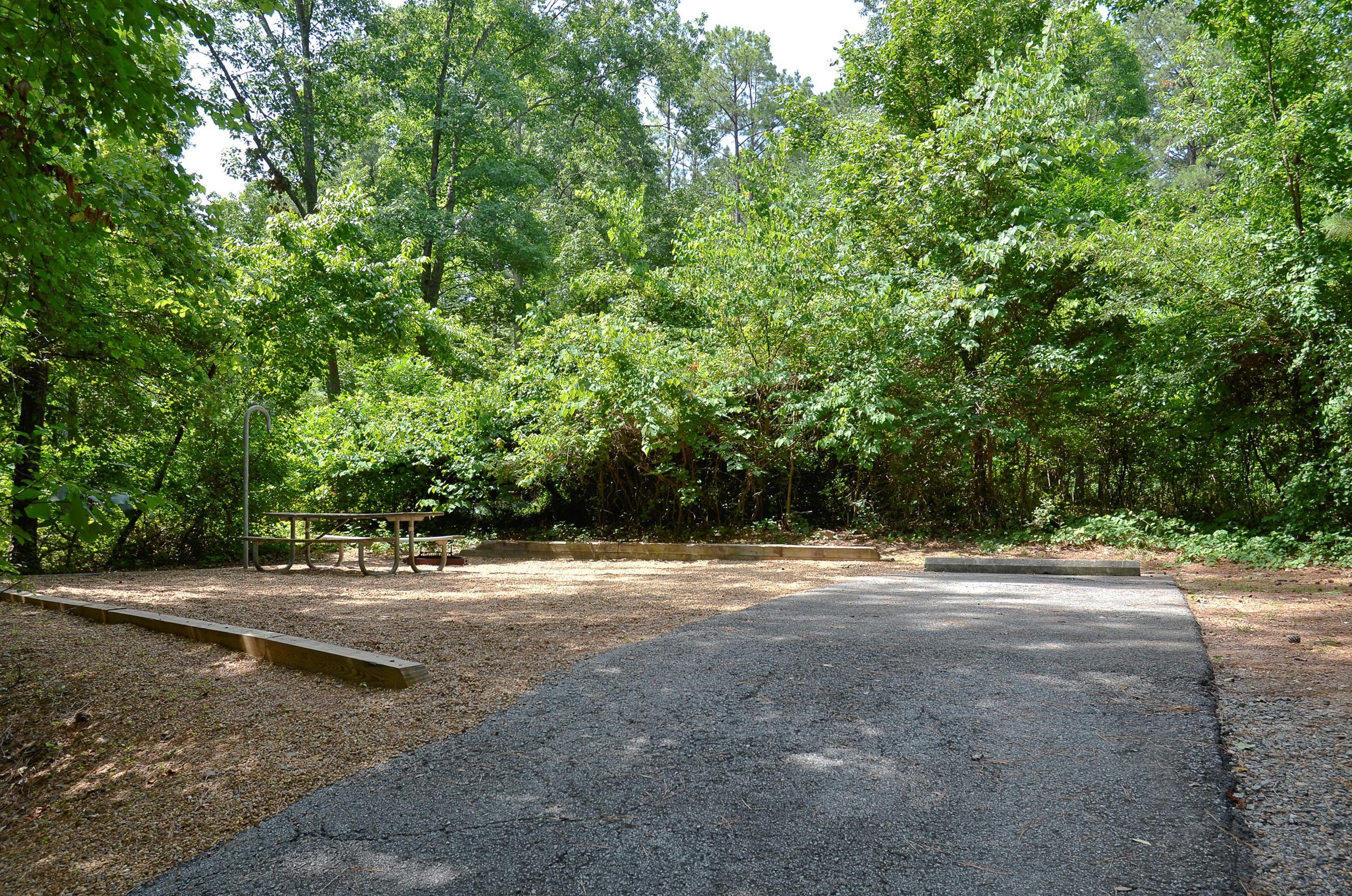 McKinney Campground Site 18