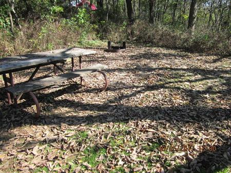 Loft Mountain Campground- Site 33Picnic table and fire pit on campsite