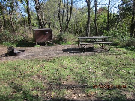 Loft Mountain Campground - Site 36Picnic table, food storage locker, and fire pit on campsite