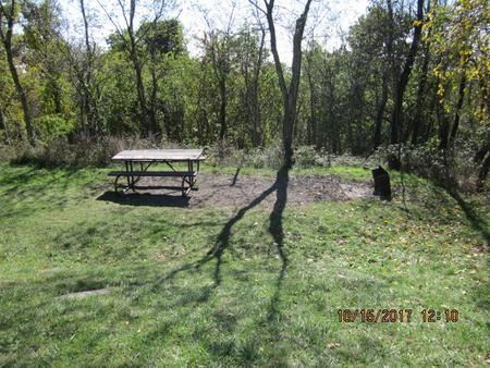 Loft Mountain Campground - Site 37Picnic table and fire pit on campsite