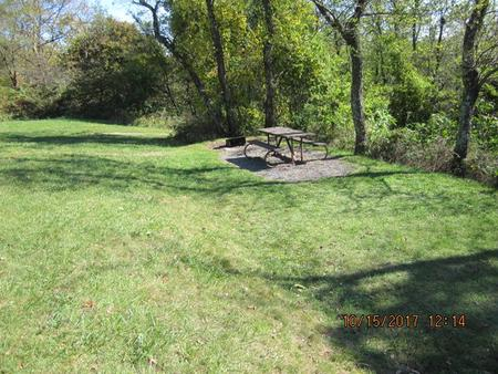 Loft Mountain Campground - Site 38Picnic table and fire pit on campsite