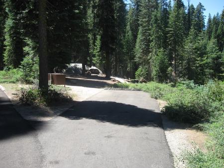 Campsite 31, Sunny, Near Restrooms