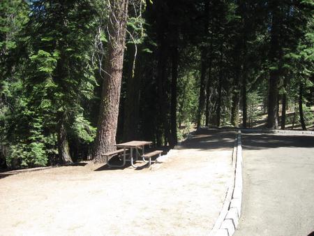 Site 45, Shady, Near Creek and Meadow