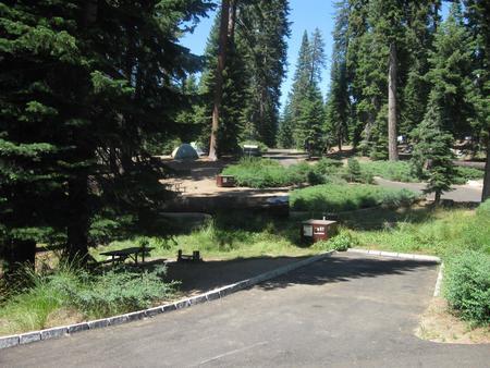 Site 57, Near Creek