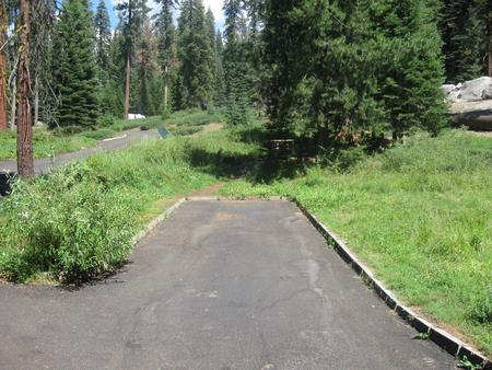 Site 61, Sunny, Near Creek and Meadow