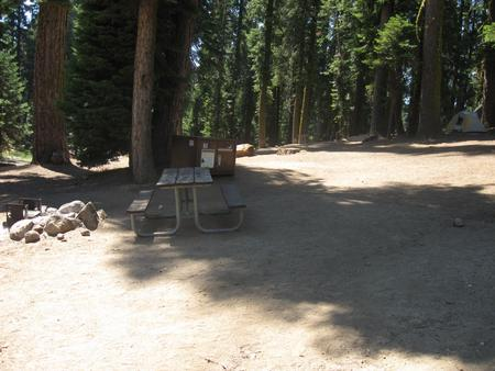 Site 66, Partial Shade, Near Restrooms