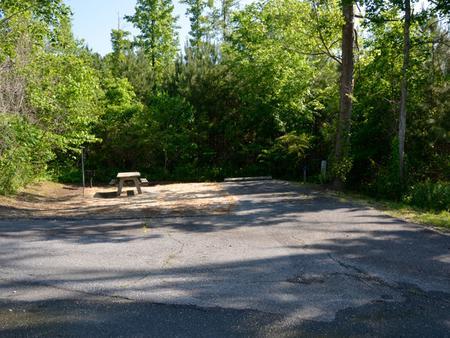 Driveway slopePayne Campground, campsite #20