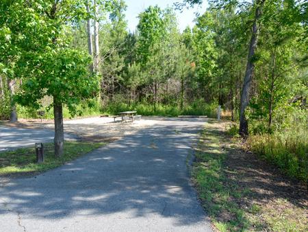 Driveway slopePayne Campground, campsite #21