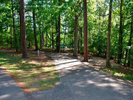 Driveway slopePayne Campground, campsite #39