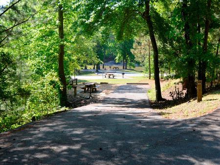 Driveway slopePayne Campground, campsite #44
