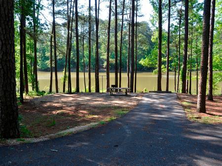 Driveway slopePayne Campground, campsite #51