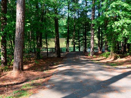 Driveway slopePayne Campground, campsite #53