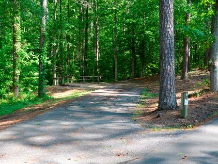 Driveway slope, awning-side clearance.Payne Campground, campsite 55.