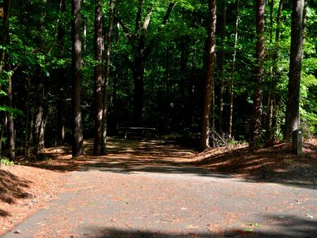 Driveway slopePayne Campground, campsite #56