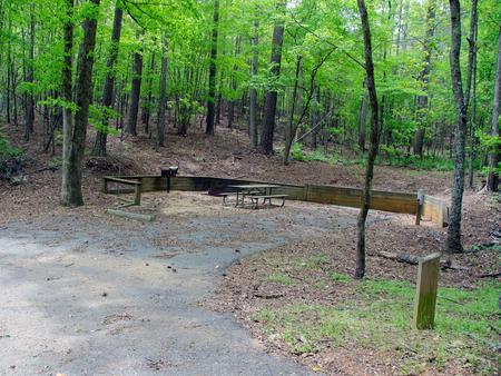 Upper Stamp Creek Campground, campsite 2.