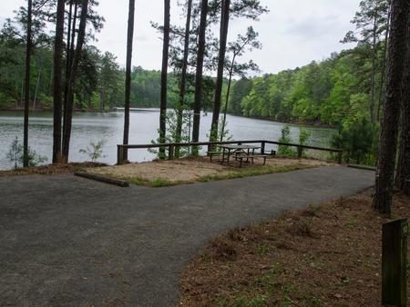 Upper Stamp Creek Campground, campsite 10Upper Stamp Creek Campground, campsite 10.