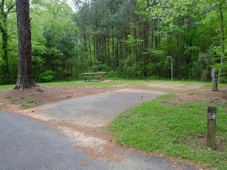 McKaskey Creek Campground, campsite 5McKaskey Creek Campground, campsite 5.
