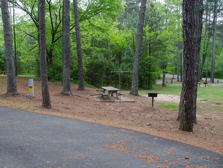 Campsite view.McKaskey Creek Campground