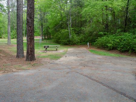 Driveway slopeMcKaskey Creek Campground, campsite #8