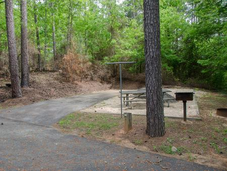 Driveway slopeMcKaskey Creek Campground, campsite #36