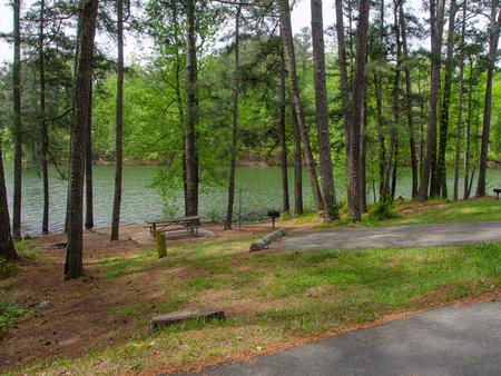 Campsite view..McKaskey Creek Campground, campsite #40
