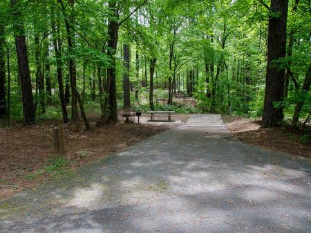 Driveway slopeMcKaskey Creek Campground, campsite #47