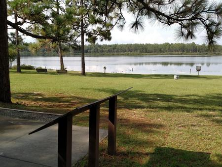 Preview photo of Camel Lake Campground