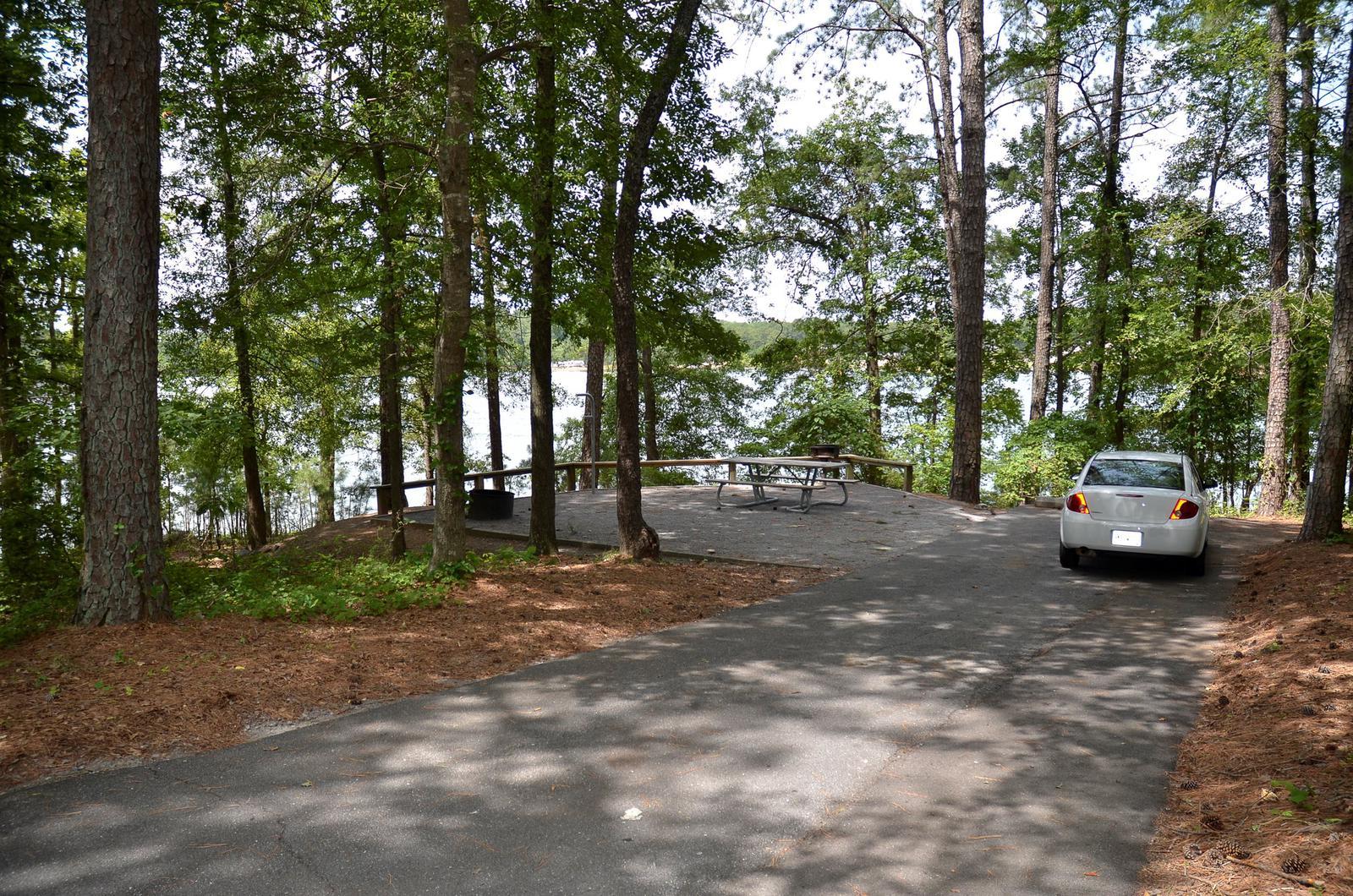McKinney Campground Site 40