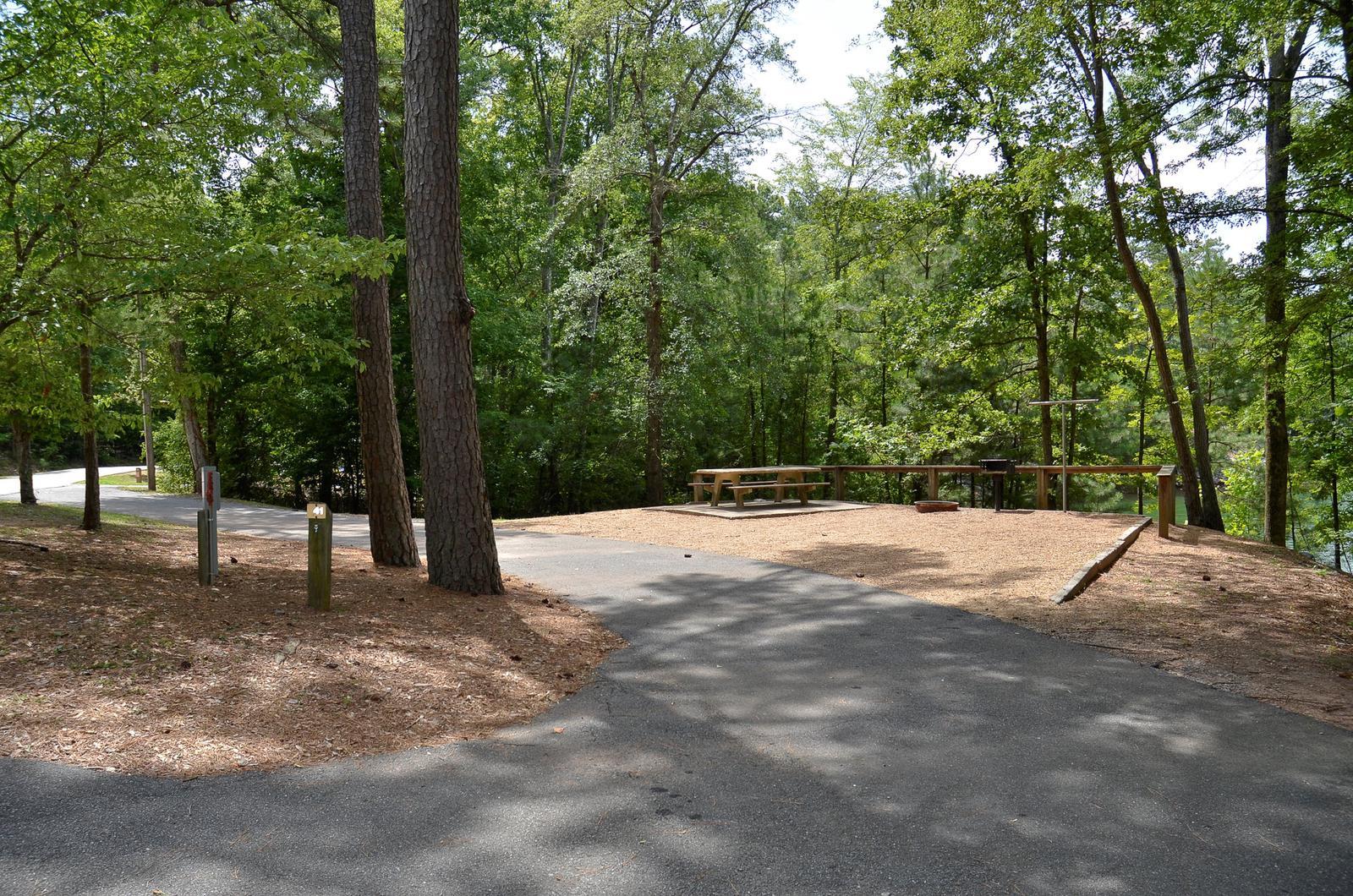 McKinney Campground Site 41