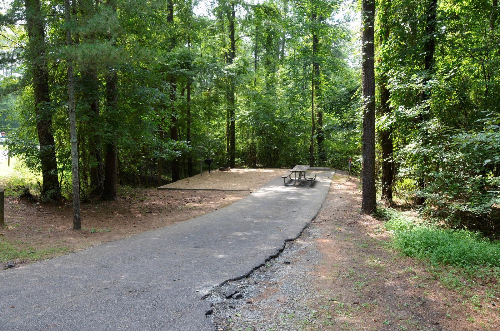 McKinney Campground Site 58