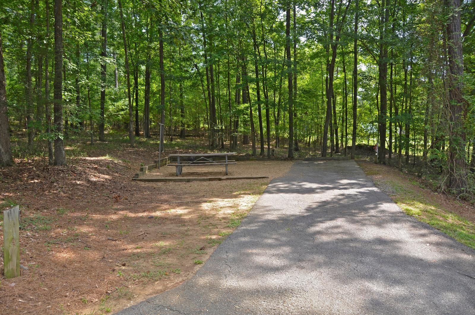 McKinney Campground Site 59