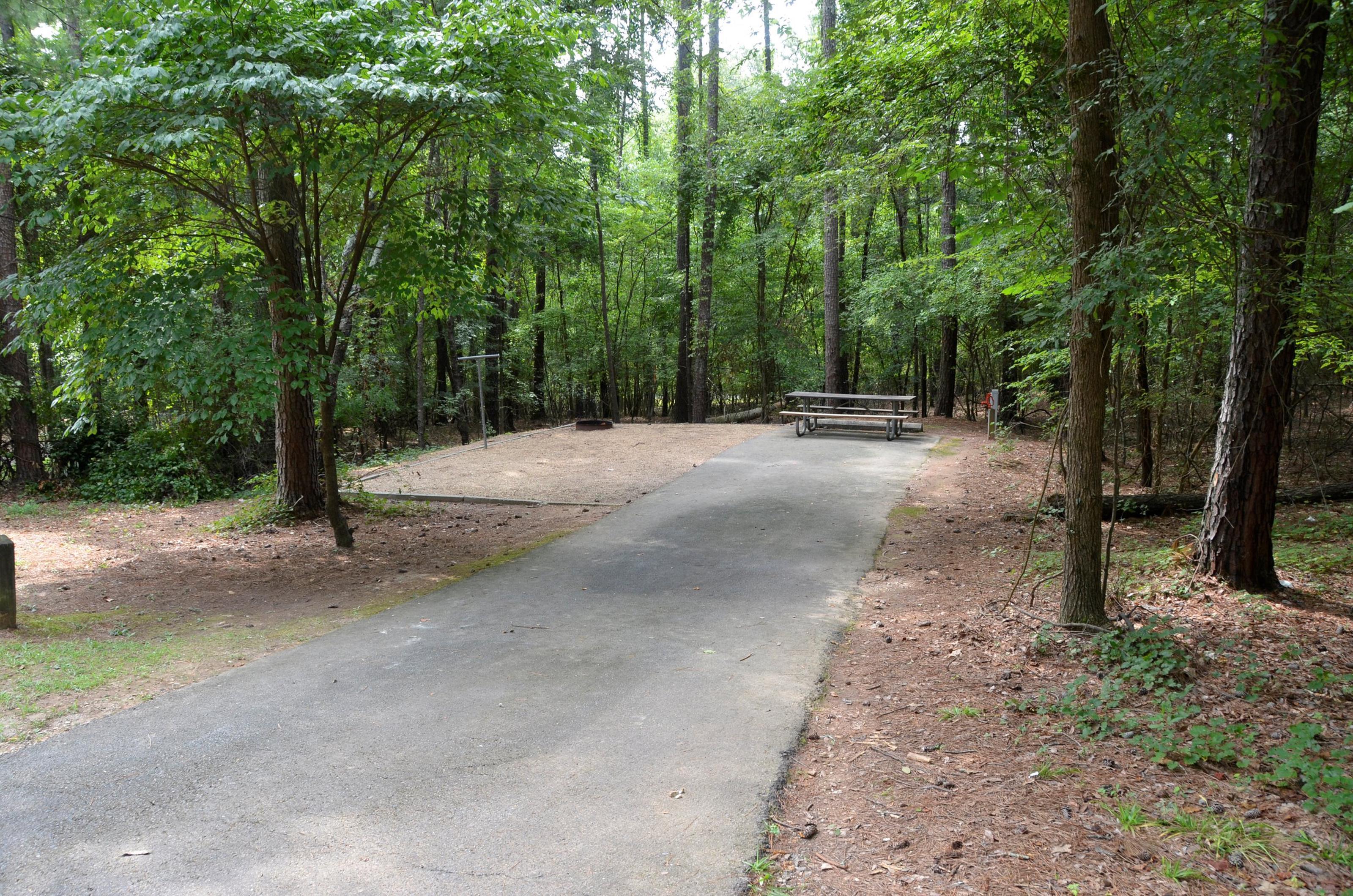 McKinney Campground Site 60