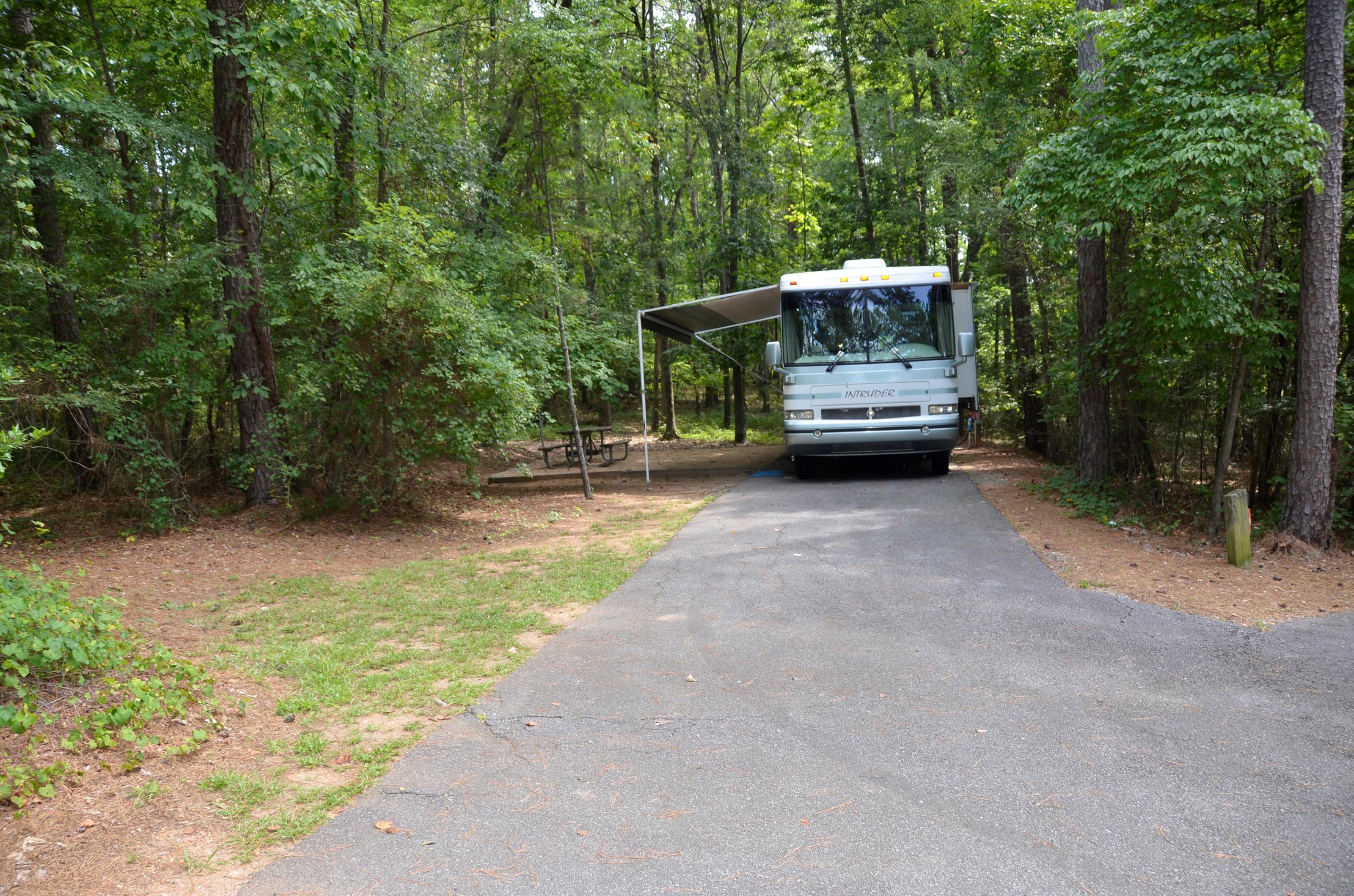 McKinney Campground Site 61