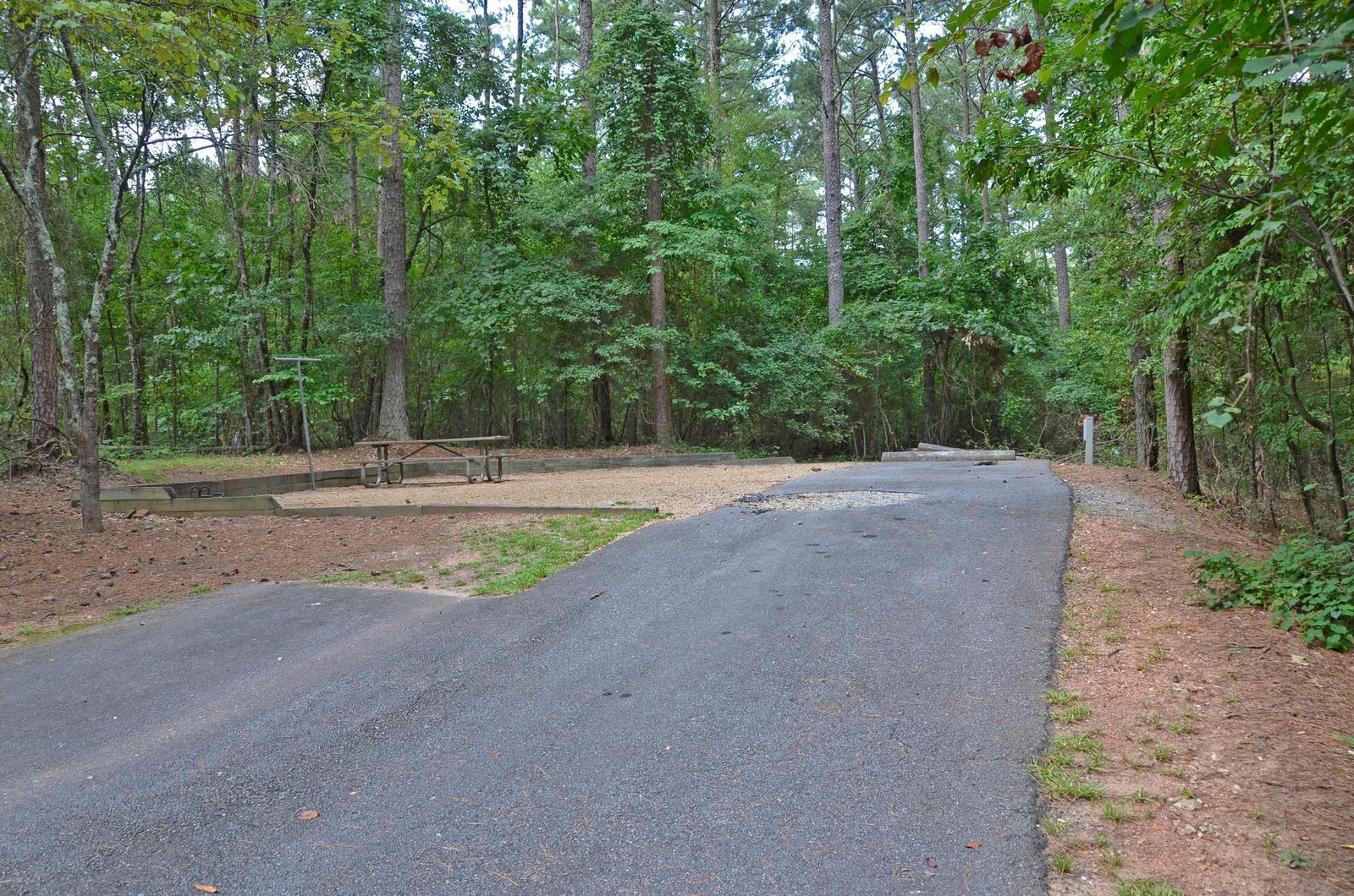 McKinney Campground Site 65