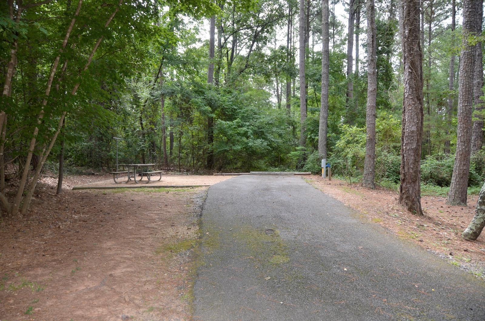 McKinney Campground Site 66