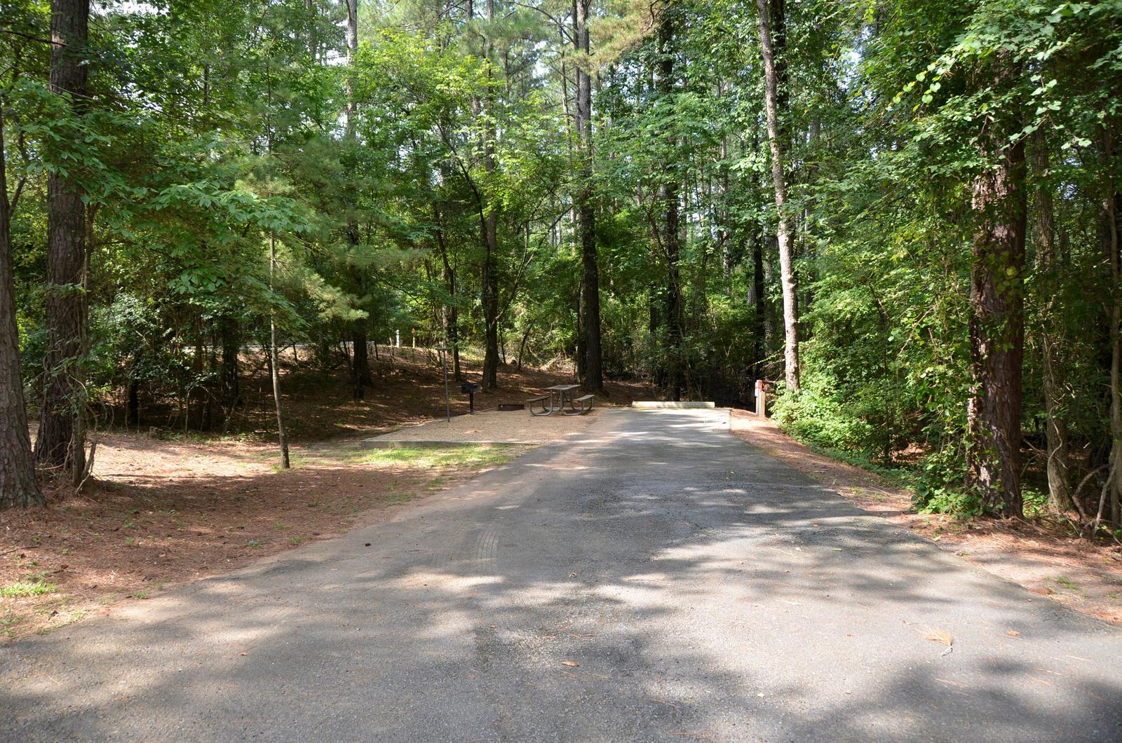 McKinney Campground Site 67
