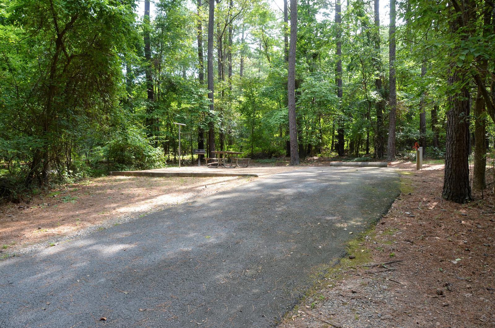 McKinney Campground Site 68